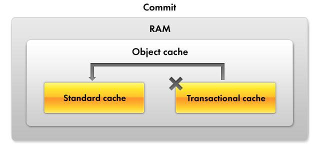 Lesson 14 (3:20). Optimization of posting the Services document / Theory. Understanding cache / Transactional cache