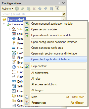 Lesson 3 (2:10). Catalogs / Customizing applied solution panel view / In Designer mode